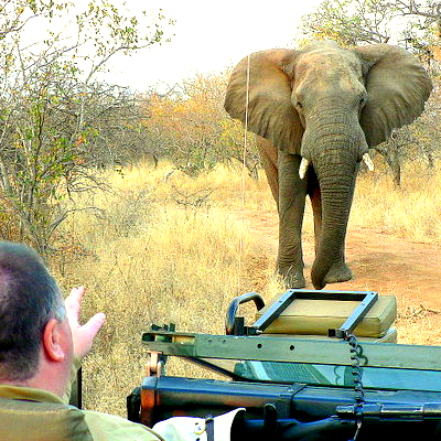 Southern Circle Tours and Safaris